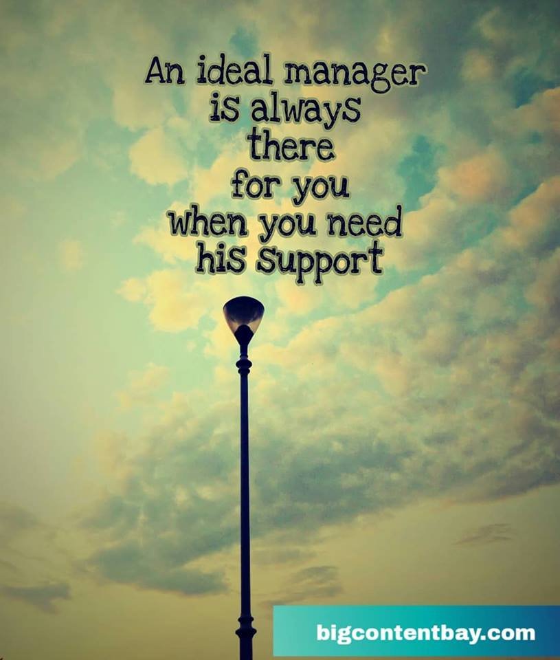 Ideal Manager's Support