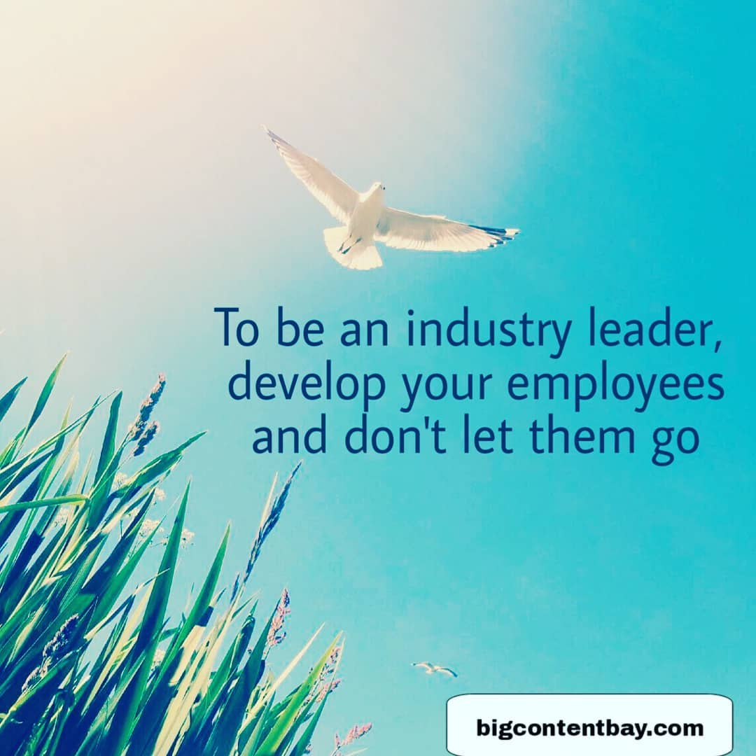 How To Be An Industry Leader?