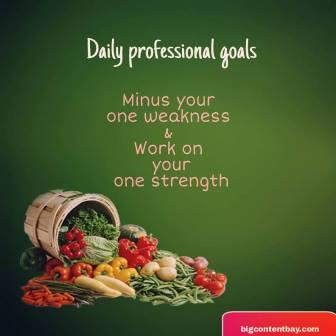 Daily Professional Goals