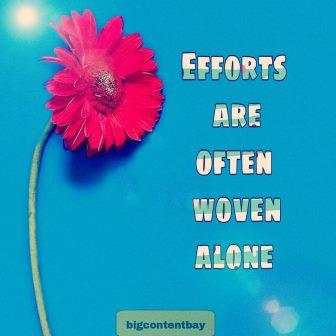 we are alone in efforts